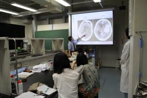 慶應義塾大学の未来の科学者養成講座でマウスの解剖