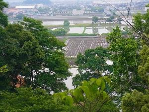 学校周辺の水田で田植え