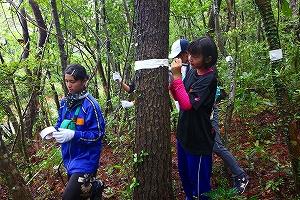 久米島での森林実習 久米島西中の生徒と取り組む