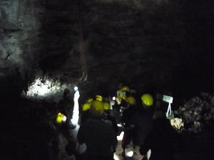久米島の鍾乳洞で夜の生物観察