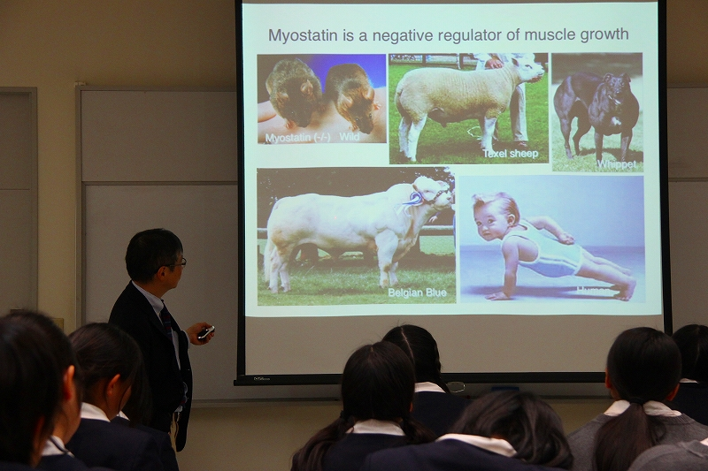 授業「生命」第28回 川崎医科大学分子生物学教室 西松伸一郎先生