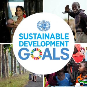 17の持続可能な開発目標(SDGs)