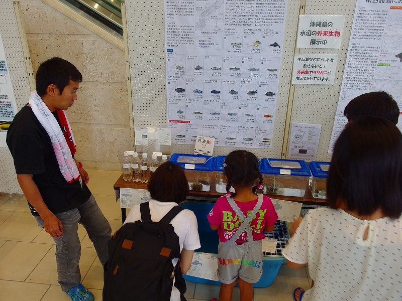 日本動物学会の「高校生による研究発表」が開催