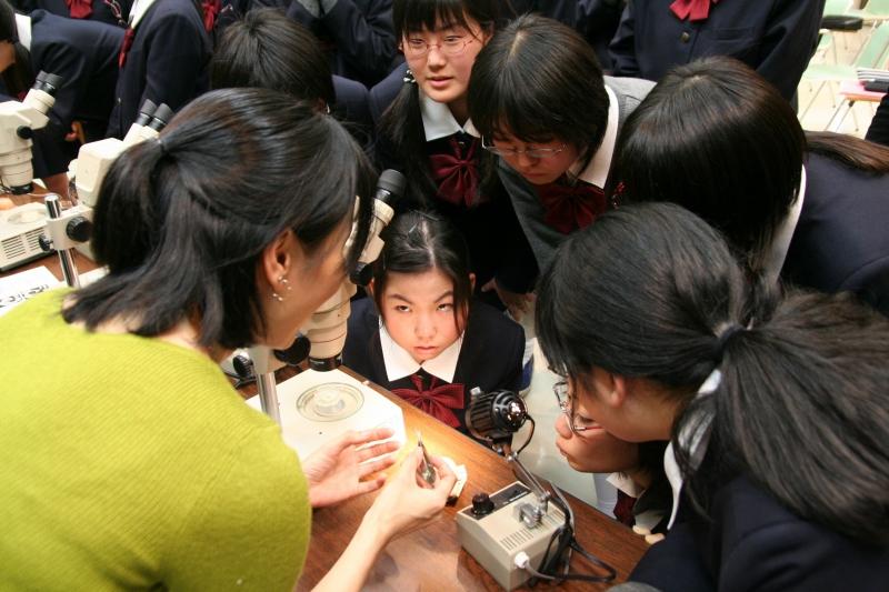 論文「科学課題研究」を中心に据えた女子の理系進学支援教育プログラムの開発(14)グローバルな視点で理科教育を考える。