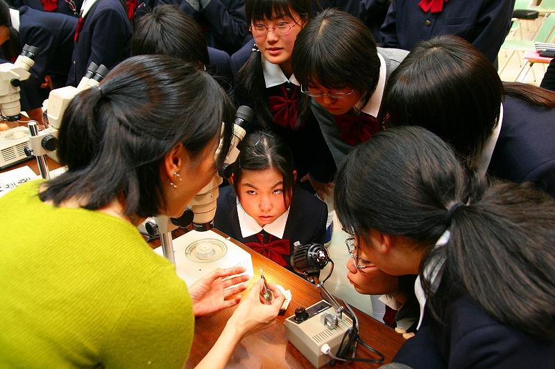 学校教育の場であなたは子どもたちにどんなイメージで見られていると思いますか。またその見方についてあなたはどう判断していますか。